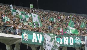 Curva Tifosi Avellino